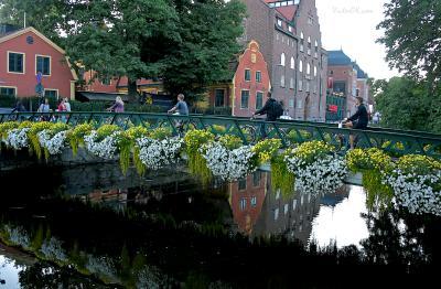 *** Швеция Уппсала велосипеды река отражения природа