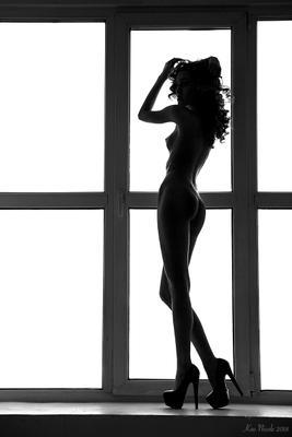 Силуэт-1 девушка ню топлесс белье тату черно-белое против света силуэт