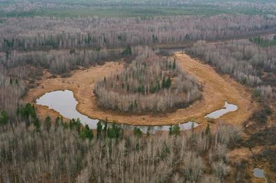 улыбка Васюгана Западная Сибирь тайга Васюганские болота
