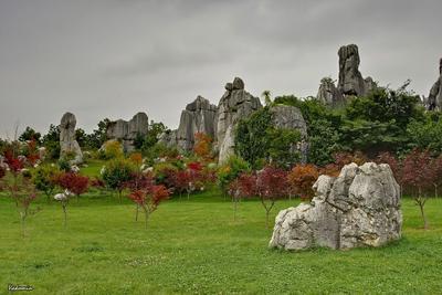 Stone Forest #4 Все цвета каменного леса Каменный_Лес Stone_Forest Юньнань Yunnan Китай China vakomin