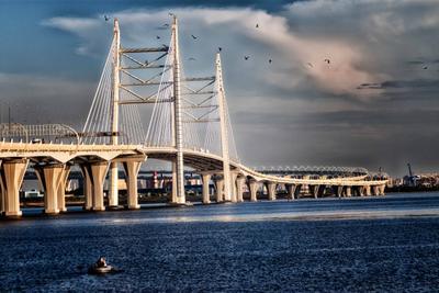Самый большой мост в Санкт-Петербурге Западный скоростной диаметр Санкт-Петербург дороги мосты вантовый мост архитектура мостов