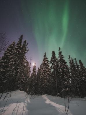 Ночной свет Печора Коми Север Северное сияние Aurora