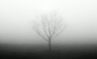 ***утро туманное