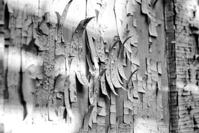 Старая стена-2