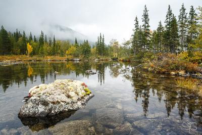 Камень, обросший лишайниками Хибины Полигональные озёра горы утро туман