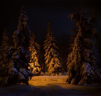 Зимняя сказка в городе