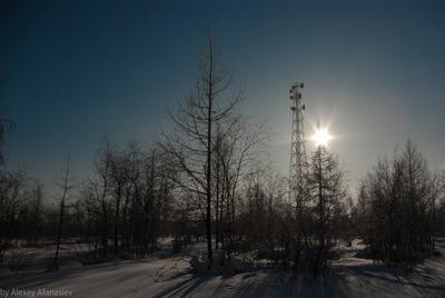 Северный день зима Новый Уренгой день