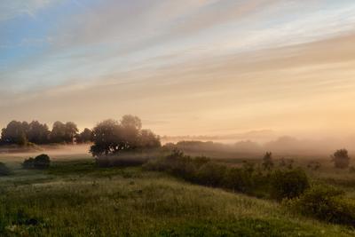 Туманное утро утро туман дунилово
