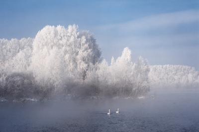 Двое на озере Алтайский край