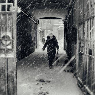 в снег