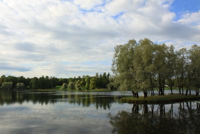 Осенью в Пушкине парк осень пруд