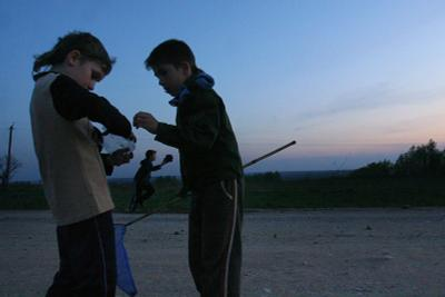 Ловля майского жука # 1