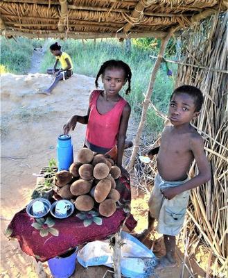 Дети Мадагаскара.