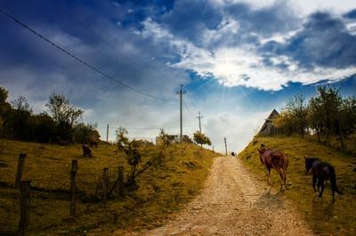 Уходим в небо небо кони село деревня лето лошадь