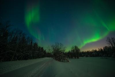 В объятиях сияния. aurora borealis северное сияние Хибины север Кольский Заполярье Апатиты мороз