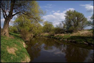Приокье река весна берег приокские дали