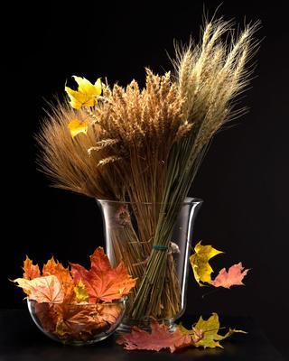 Осень Букет злаки листья степкло