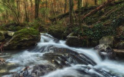 Осень на горной речке