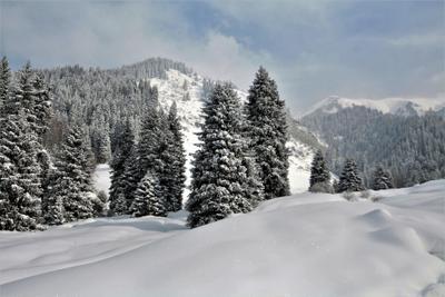 В горах Алматы