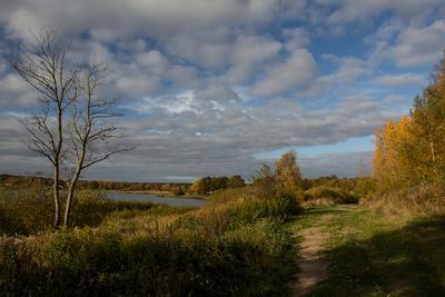 Осеннее озеро Пейзаж озеро деревья облака осень