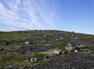Время собирать камни Камни, сопки