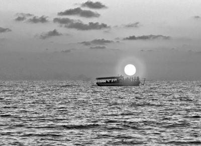Охотники за солнцем море солнце закат лето ч б