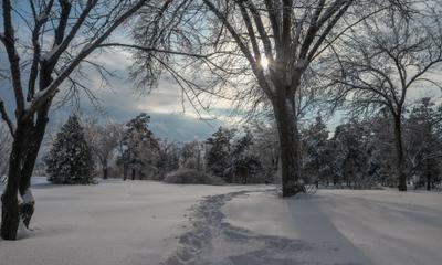 Южный склон Зимний пейзаж Мемориальный парк зимой Парк Победа Мамаев курган Храм Всех Святых шикарная природа Зима Южный склон Мамаева кургана