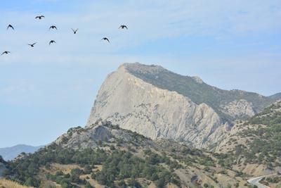 гора Сокол в Судаке (Крым)