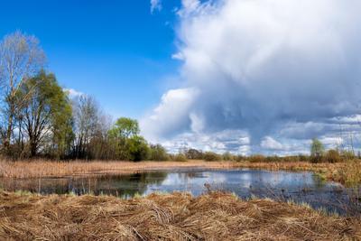 Апрельское настроение! Весна сухая трава озеро облака небо