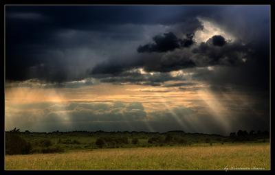 В краю облаков