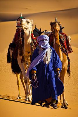Погонщик каравана Ливия, Сахара, Верблюды, Караван
