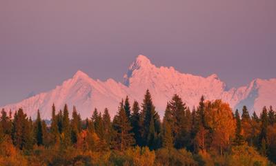 Осенний Урал в лучах вечернего Солнца Печора Закат Солнце