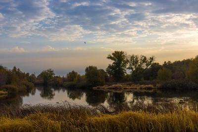 Тихое утро река утро небо облака