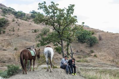 На Кара-Даге. Привал кара-даг люди лошади дерево коры