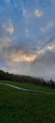 *** Трава облака рассвет