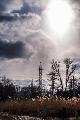 Мороз и солнце) солнце ветер лес камыш