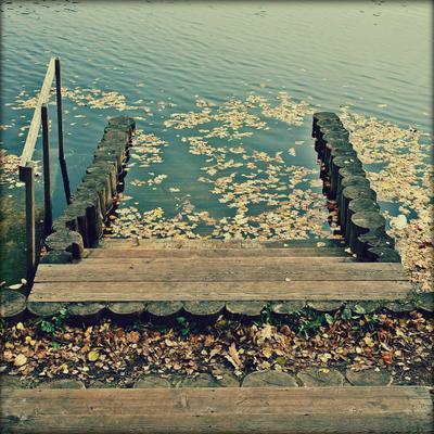 *** осень, парк, пруд