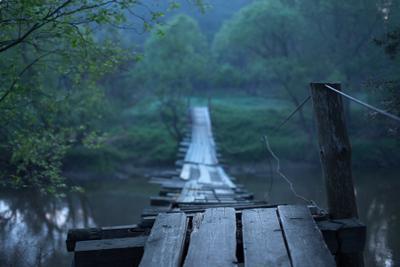 * * * утро река мостик дымка