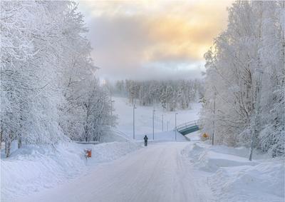 Морозное утро снеш лыжи мороз