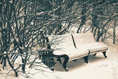 Сплетницы зима снег скамейка