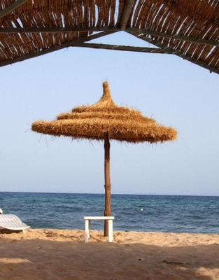 Summer dreams пляж, зонтик, море, отпуск