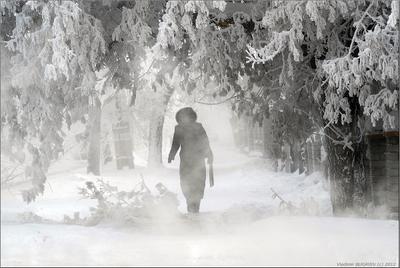 Минус 43... Занятия отменили... Зима мороз 43 погода аномалия туман город loveopium.ru  news Pavlodar Kazakhstan Vladimir Bugayev
