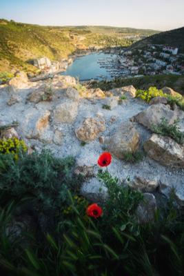 Настроение весны крым балаклава рассвет весна маки черноеморе юбк
