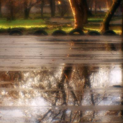 моноосень в парке осень лужа колёса монокль плёнка