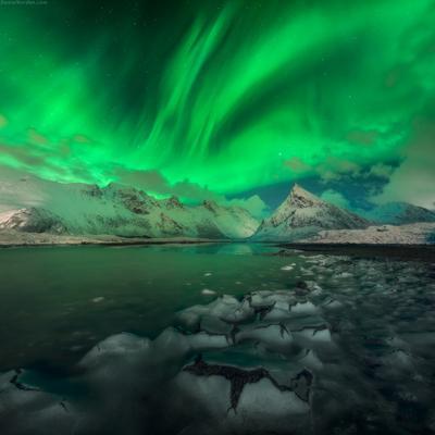 *** Alien aurora *** Лофотены