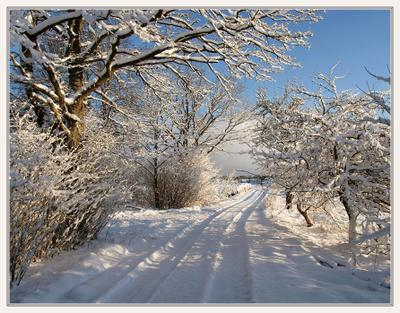 Зимнее утро родовое поместье утро