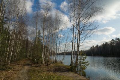 Осенняя пора озеро река осень лес тропинка небо облака