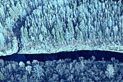 анатомия северного леса западная сибирь вертолет лес река