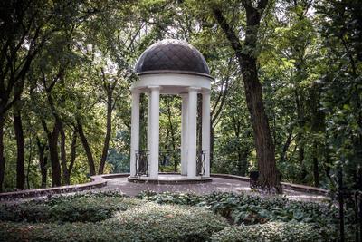 Парк в Гомеле Дворец Румянцевых-Паскевичей Гомель беседка парк