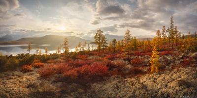 """""""Композиция с озера Джека Лондона"""" Колыма Дальний Восток Магаданская область озеро Джека Лондона краски осени осень"""